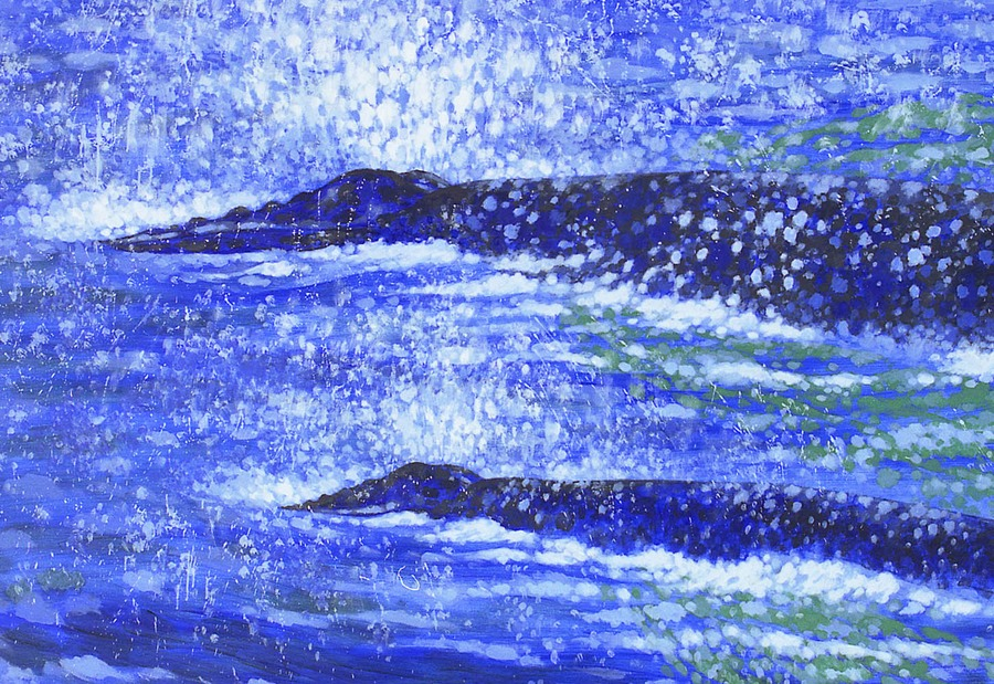 Humpbacks, cow-calf detail